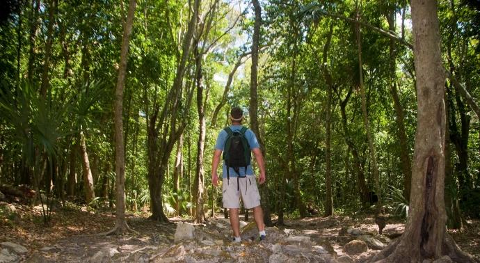La Selva Maya