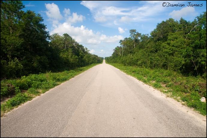Yucatan road