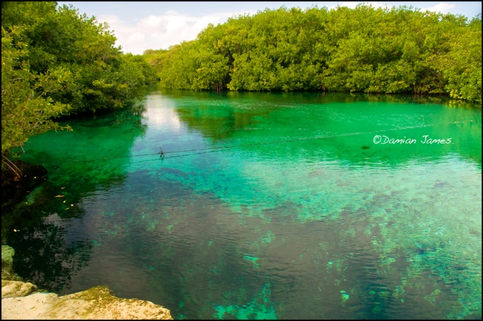 Cenote-08