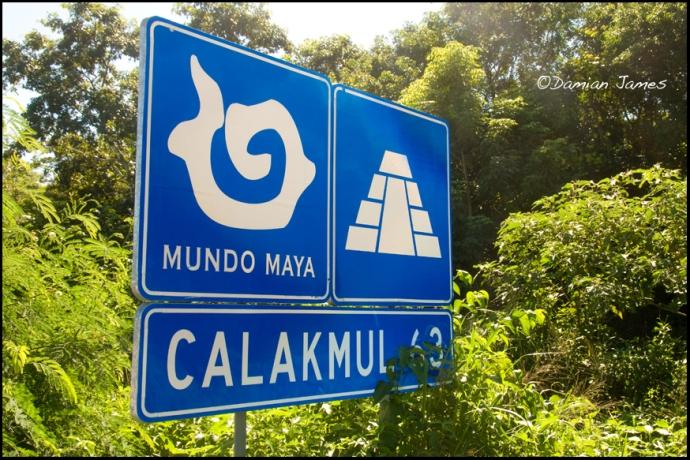 Calakmul - 1