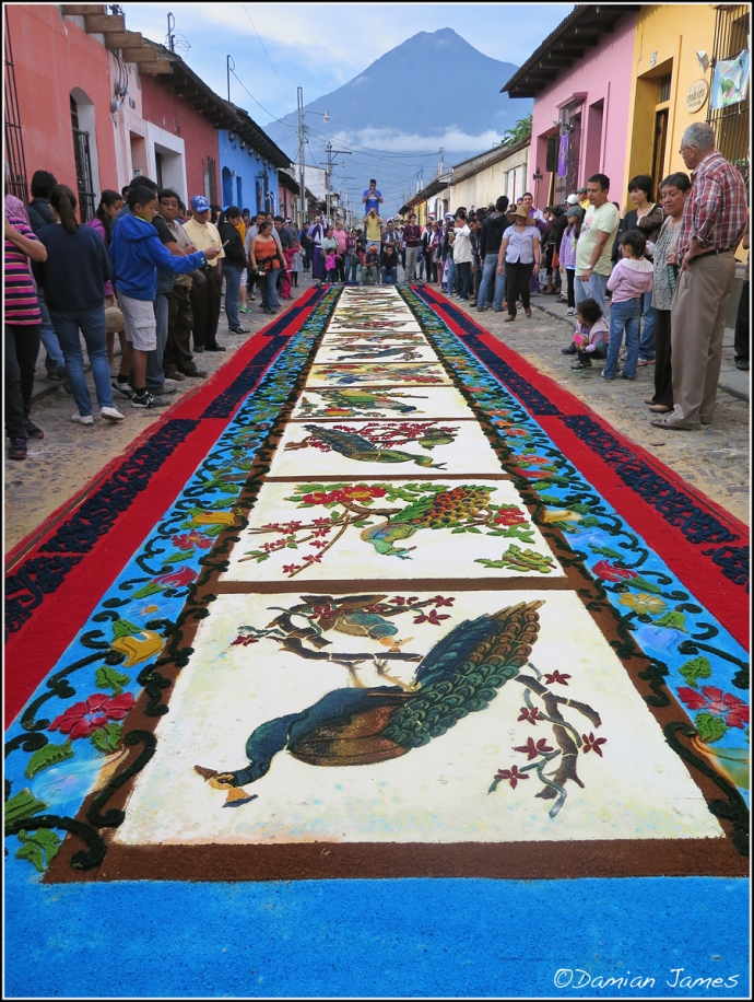 Antigua 07
