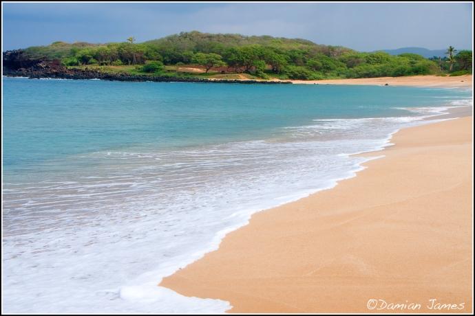 The Beach - 5